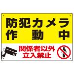防犯カメラ作動中 関係者以外立入禁止 C オリジナル プレート看板 W450×H300 エコユニボード